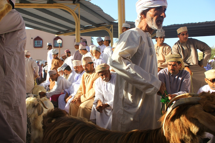 Oman (1435)bb
