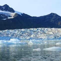 Vue sur le glacier de Svea depuis la mer
