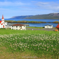 NSchweitzer_Islande