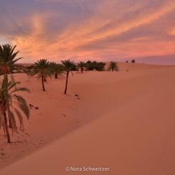 Coucher de soleil sur Tanouchert, Adrar