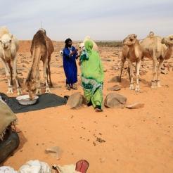 Mauritanie © Nora Schweitzer