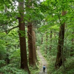 Marche spirituelle sur le mont Haguro, montagne sacrée des yamabushi, Yamagata, Japon © Nora Schweitzer