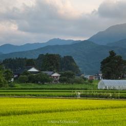 Les montagnes et terres cultivées, paysages typiques de la région de Yamagata, Japon © Nora Schweitzer